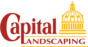 Des Moines Landscaping Company Capital Landscaping Central Iowa