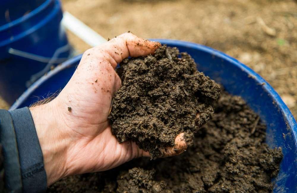 Good, Clean Soil