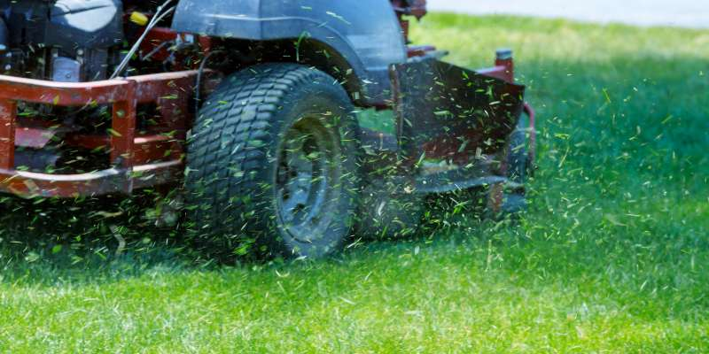 Red lawn mower shooting up grass