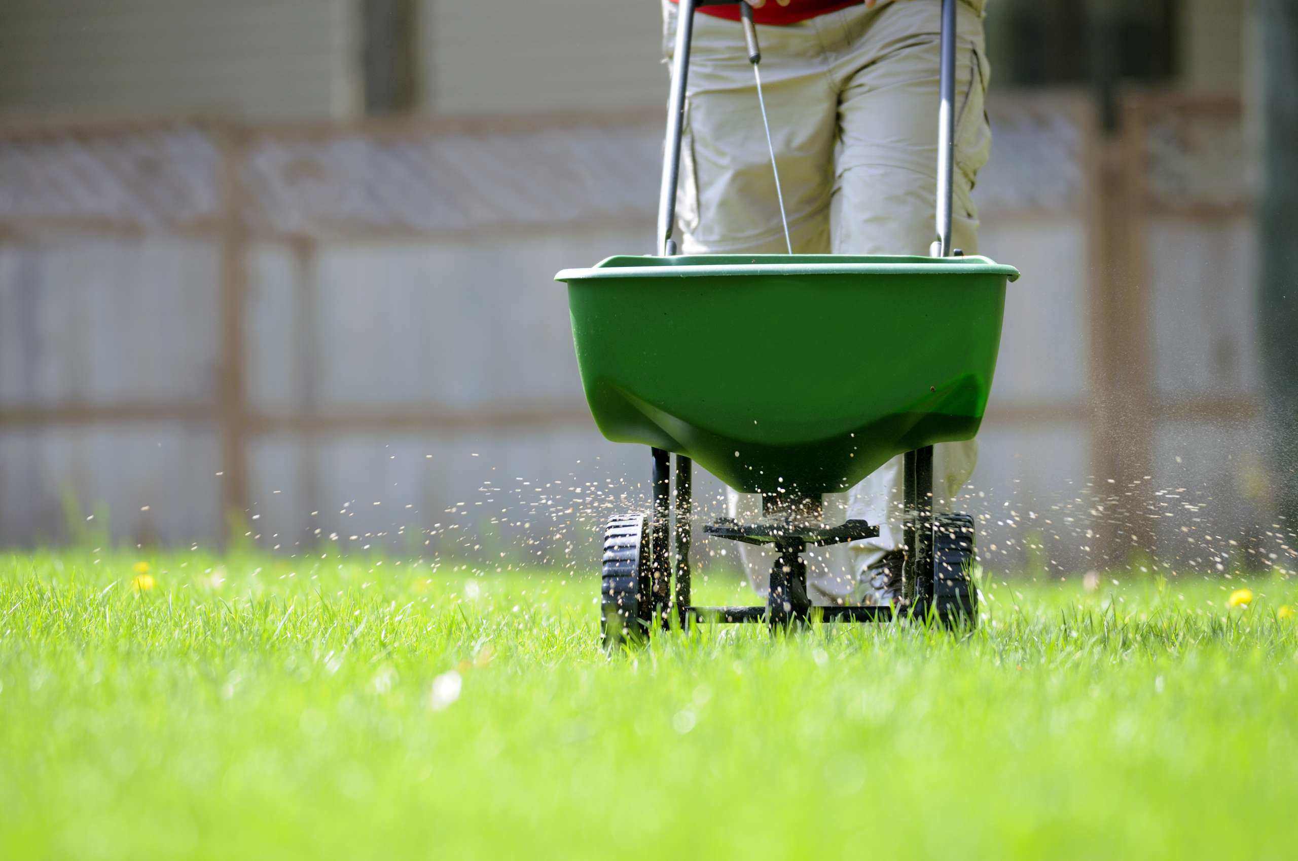 Lawn Fertilization using a broadcast spreader